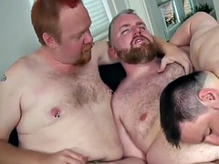red bear analfucking chubby from behind