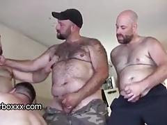 Bear DNA 2