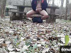 Picnic Area Risky Nude Wank