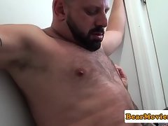 Inked bear assfucking his lover