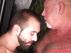 Asslicking silver bear takes cum in mouth