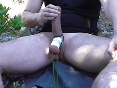 Hung Bear Cum