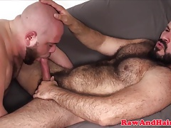 Hairy superchub barebacks cocksucking chubby