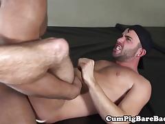 Unsaddled black bear doggystyling tight butt