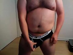 Briefs bear