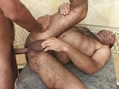 Brasilian Chunky Bear Taking Hard Dick Deep Inside