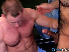 Throating muscly bear