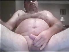 Fag Bear Jerks Off