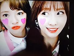TWICE jeongyeon & momo cum tribute