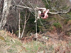 Naked self-bondage in the woods gone wrong