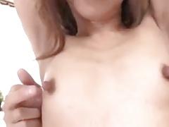 Nippel