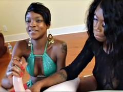 Two black girls jerk off white cock
