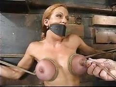 Bdsm:adult model Shannon Kelly,,,mrskyd:)
