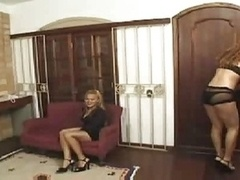 3-way Trannies Party With Blonde Girl