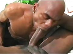 ebony gay rooftop sex