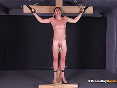 Twink Crucified Whipped Jerk Off Cum Uncut Cock Gay Bondage