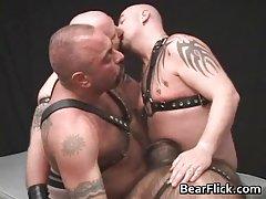 Four kinky bear guys having extreme gay gang bang