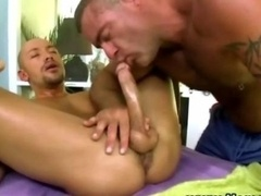 Homosexual blows off male-female knob
