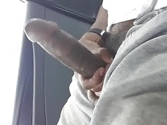 In The Whip wit the Stick (Chronicles)
