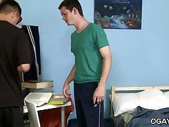 Roommates sharing a fleshjack