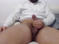 bear dick