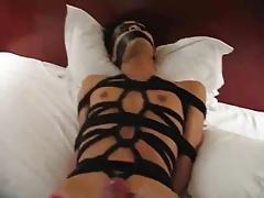 1 BDSM
