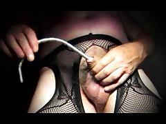 crossdresser trans sounding urethral cock lingerie nylon