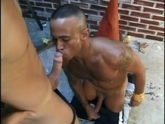 Asian poofter and his buddy have oral sex and drill each other's butts