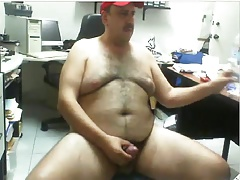 Daddy bear working hard at office