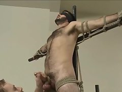 sadomasochism - moist hairy chap acquires fastened Up And Edged.