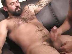 Handsome Bear gets a Handjob & Cums