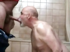 Sub daddy bear gettng fucked bareback and sucking