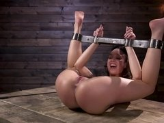 Sexy chicks and dudes get bound and played with