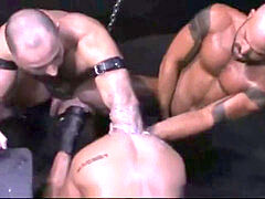 3 studs MUSCLE knuckle