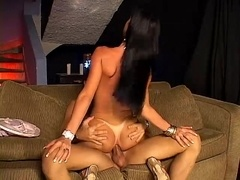 Brunette tranny blows and gets her ass pounded every which way