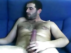 Amazing bear wanking